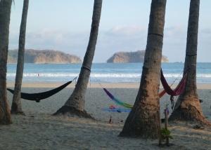 playa - hammocks