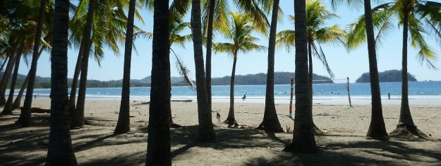 Samara - palm trees and beach