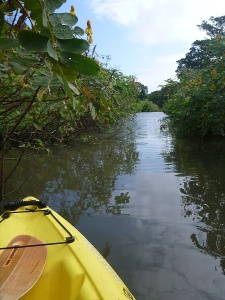 Ometepe 2 - kayak
